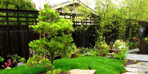 Basic Landscaping Tips For Creating A Perfect Outdoor Ambiance - Basic landscaping tips