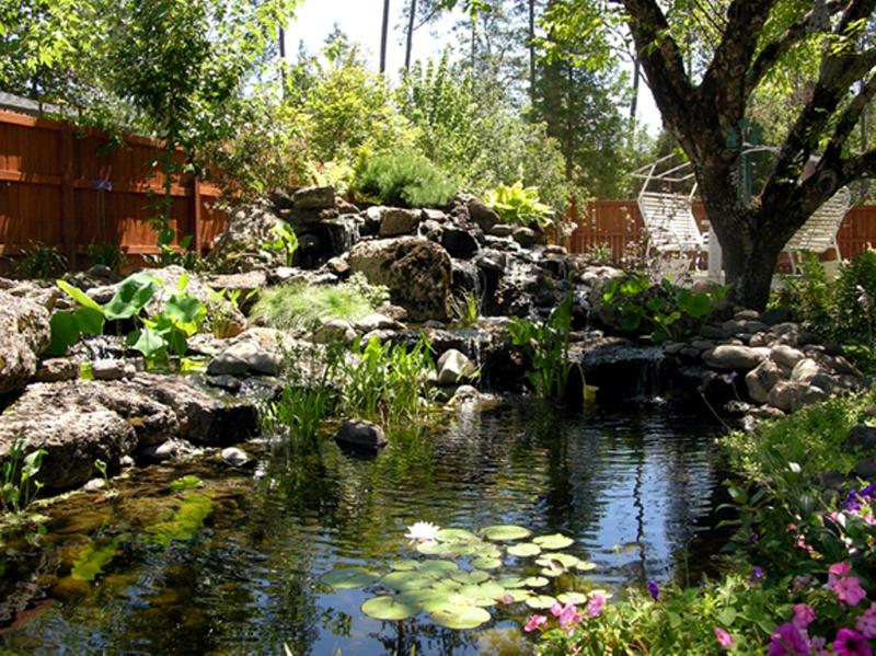 Amazing backyard pond design ideas rilane for Large outdoor fish ponds