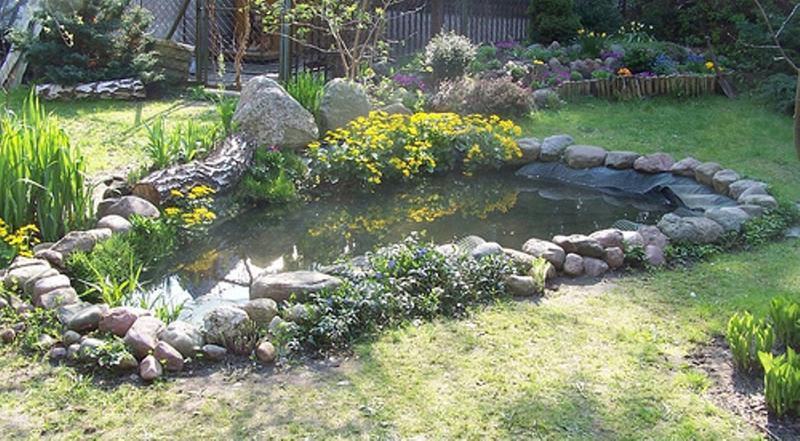 Amazing backyard pond design ideas rilane for Natural backyard pond