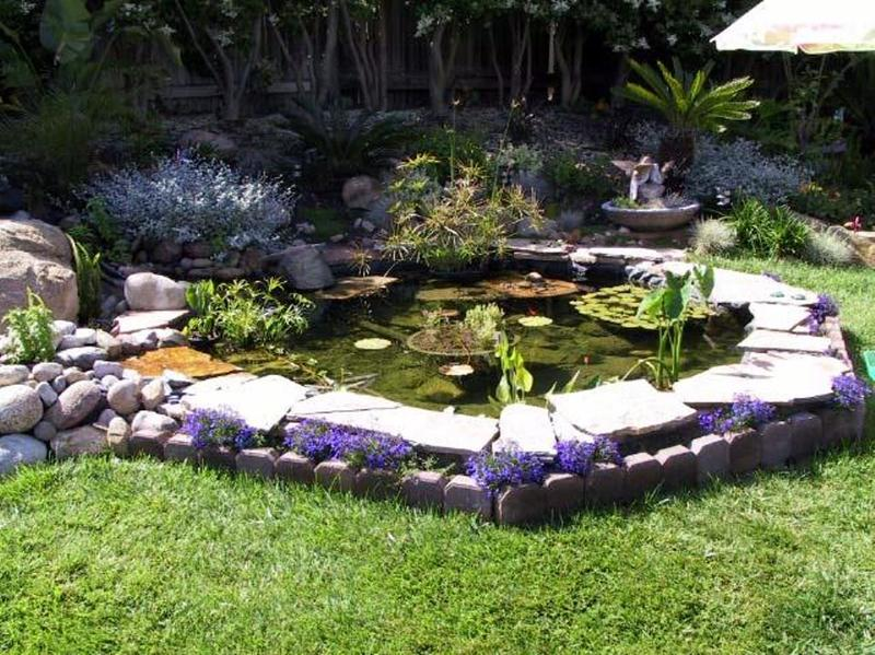 Amazing backyard pond design ideas rilane for Small yard ponds