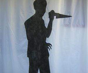 Psycho Shower Curtain Ideas