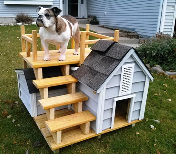 12 lovable outdoor dog houses rilane for Cool dog kennel designs