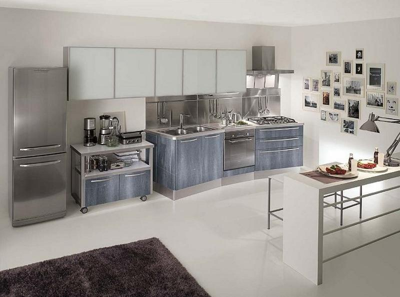 Stainless Steel Kitchen Design 15 contemporary kitchen designs with stainless steel cabinets - rilane