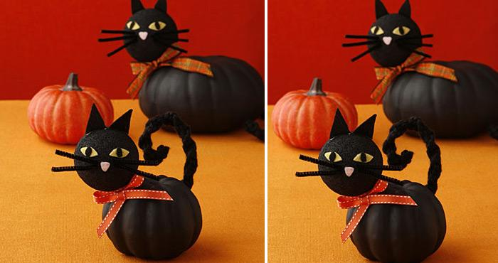 cat pumpkins how cute and adorable are these cat pumpkins with adorable faces right well if you like them why dont you check the super easy tutorial - Cute Halloween Decor